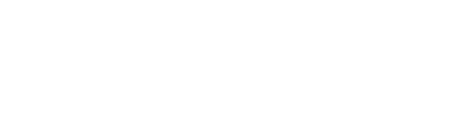 Telesec Logo Footer